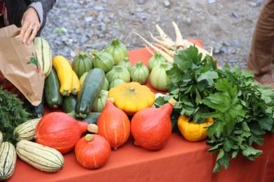 2015-09-05 - Marché fermier Havrenne (192) (1024x683)