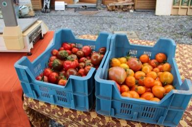 2015-09-05 - Marché fermier Havrenne (92) (1024x683)
