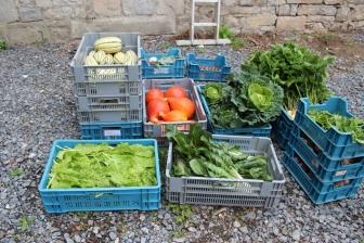 2015-09-05 - Marché fermier Havrenne (93) (1024x683)