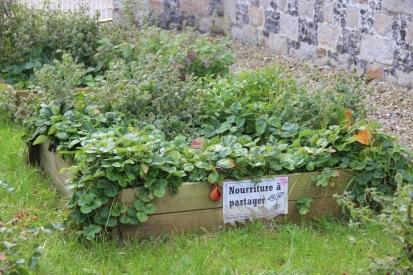 Crécy-en-Ponthieu