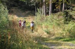 2018-08-15 - Promenade Concessions (44)