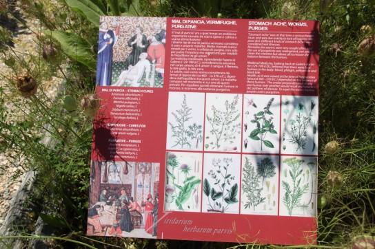 Rocca di Angera - Jardin médicinal