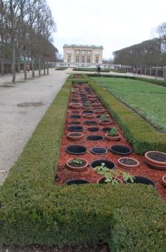 2020-01-04 - Versailles avec JMNM (35)